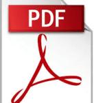 disc-partners-pdf-document-icon