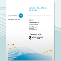 disc group culture report disc partners