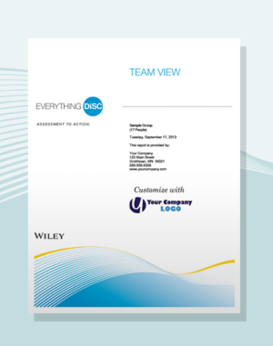 everything disc team view report disc partners