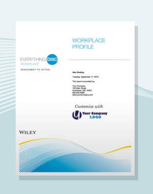 everything disc workplace profile disc partners