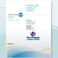 disc productive conflict profile disc partners